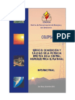Informe CH El Platanal