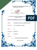 Informe de Paracticas Empresariales i