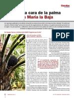 CINEP- La Otra Cara de La Palma en Maria La Baja