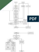 Pathophysiology Diagram- Stroke