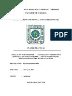 PLAN DE PRACTICA-2014.docx