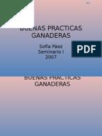 BUENAS PRACTICAS GANADERAS