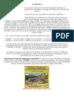 INTERPRETACIÓN DE MAPAS.docx
