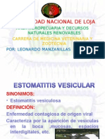 ESTOMATITIS VE
