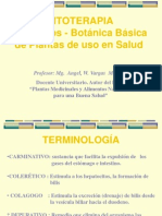 Fitoterapia-2