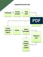Etapele Managementului Resurselor Umane