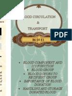 Blood Pamphlets