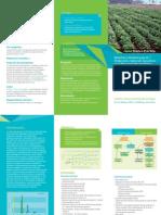 Métodos y modelos para la predicción y selección genómica en el mejoramiento de plantas