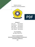 210277917 Anatomi Fisiologi Histologi Mandibula
