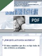 CLASE LACTANCIA-2