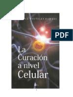 La Curacion a Nivel Celular.