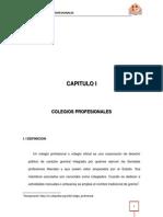Colegios Profesionales Capitulo i