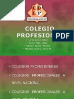 Colegio Profesional Exposicion