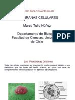 Clase 10 Membranas Celulares