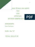 Informe MINERIA de DATOS Rodriguez Oscar - Enviar