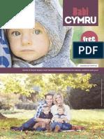Babi Cymru