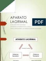 3. APARATO LAGRIMAL