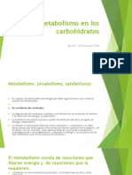 Metabolismo en Los Carbohidratos