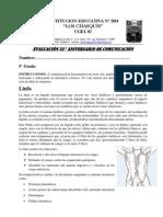 Examen C. L 5º y 6° aniversario - 2014
