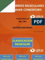 DESEQUILIBRIOS MUSCULARES