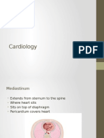 Cardiology Powerpoint