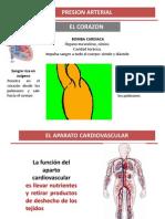Lab 10 - Presion Arterialm