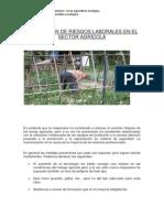 Riesgos Laborales en El Sector Agrícola