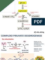 02-27-14 Krebs Fosforilação Fotossintese