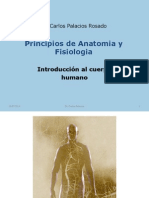 Clase5- Anatomia General