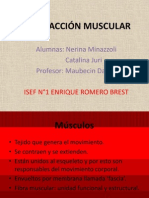 CONTRACCI+ôN MUSCULAR