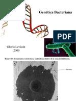 Clase 9 Genética bacteriana