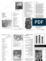 Panfleto Poetico Numero 5