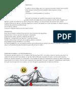 Autoestiramiento Del Músculo Piramidal