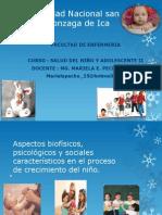 Clase 1.5.- Aspectos Biofisicos, Psicologicos y Sociales Caractristicos en El Proceso de Crecimiento Del Niño - Mg. Mariela Pecho Tataje