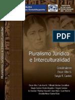 Pluralism o
