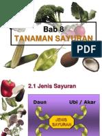 bab8 tanaman sayuran