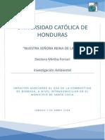 Protocolo de Investigacion Marco Mejia!