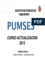 PUMSES Curso Actualizacion Abril 2013