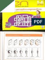 Habilidades Perceptivo - Cognoscitivas (2)
