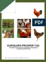 Kuroiler - NPV Financial Plan - Chick Sales
