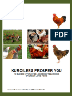 Kuroiler - NPV Financial Plan - Chick Sales