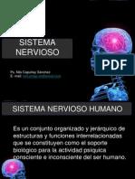 Sistema Nervioso 5ta