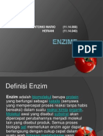 ENZIME ppt