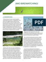 Introduzione al Birdwatching