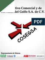 PRESENTACION COSEGSA