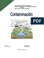 TRABAJO de Contaminacion