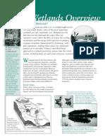 2005 01 12 Wetlands Overview