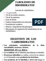 9.....METABOLISMO_DE_CARBOHIDRATO_2004_IBIOQUIMICA[1] (1)