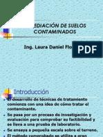 SUELO - Remediación de Suelos Contaminados (1)