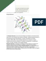 BIOLOGIA MOLECULAR - RESUMEN.docx
